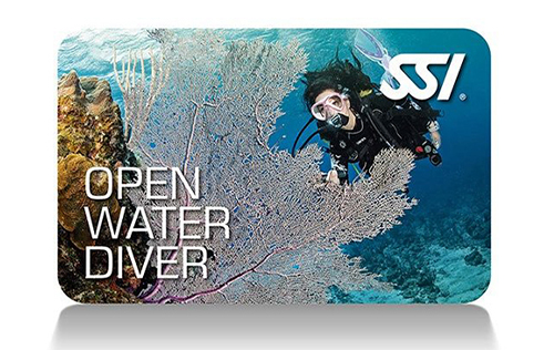 4 – Open Water Diver (ISO 24801-2)