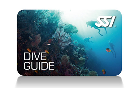 1 – Dive Guide (ISO 24801-3)