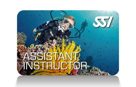3 – Assistant Instructor